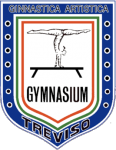 Gymnasium_Treviso